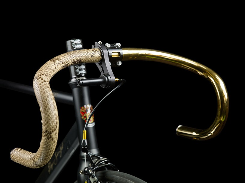 The Ultimate Bike. 24K Gold Plating, Snakeskin… This Bad Boy Is Just Nice To Look At…
