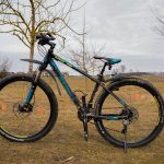 Road Bike vs Mountain Bike: Choosing The Right Ride