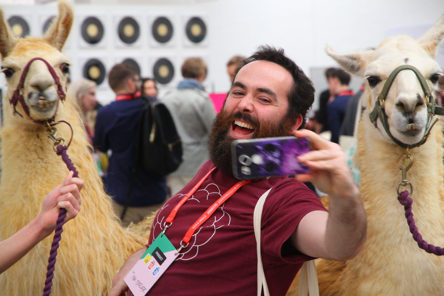 In Pictures: When Llamas Crashed A London Tech Fair