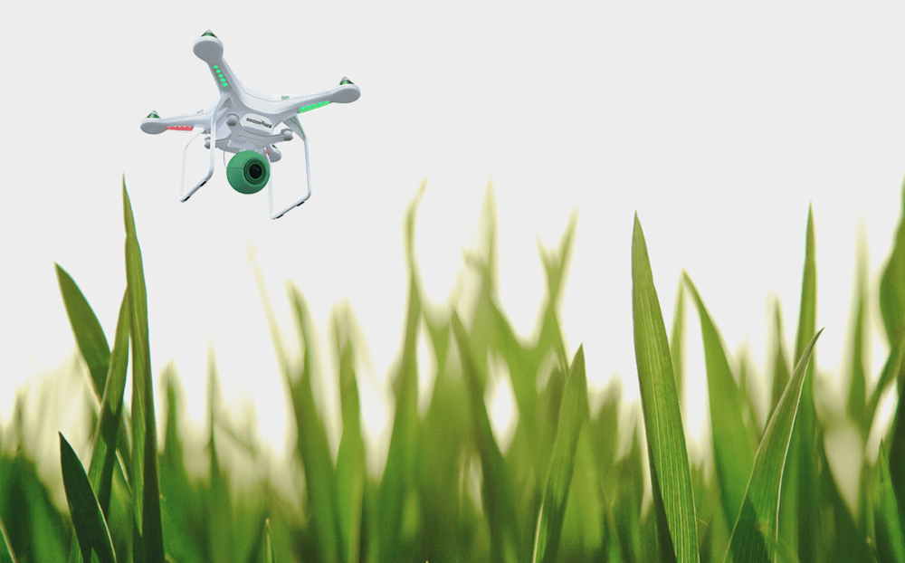 The Drones Collecting Your Dog's Poo
