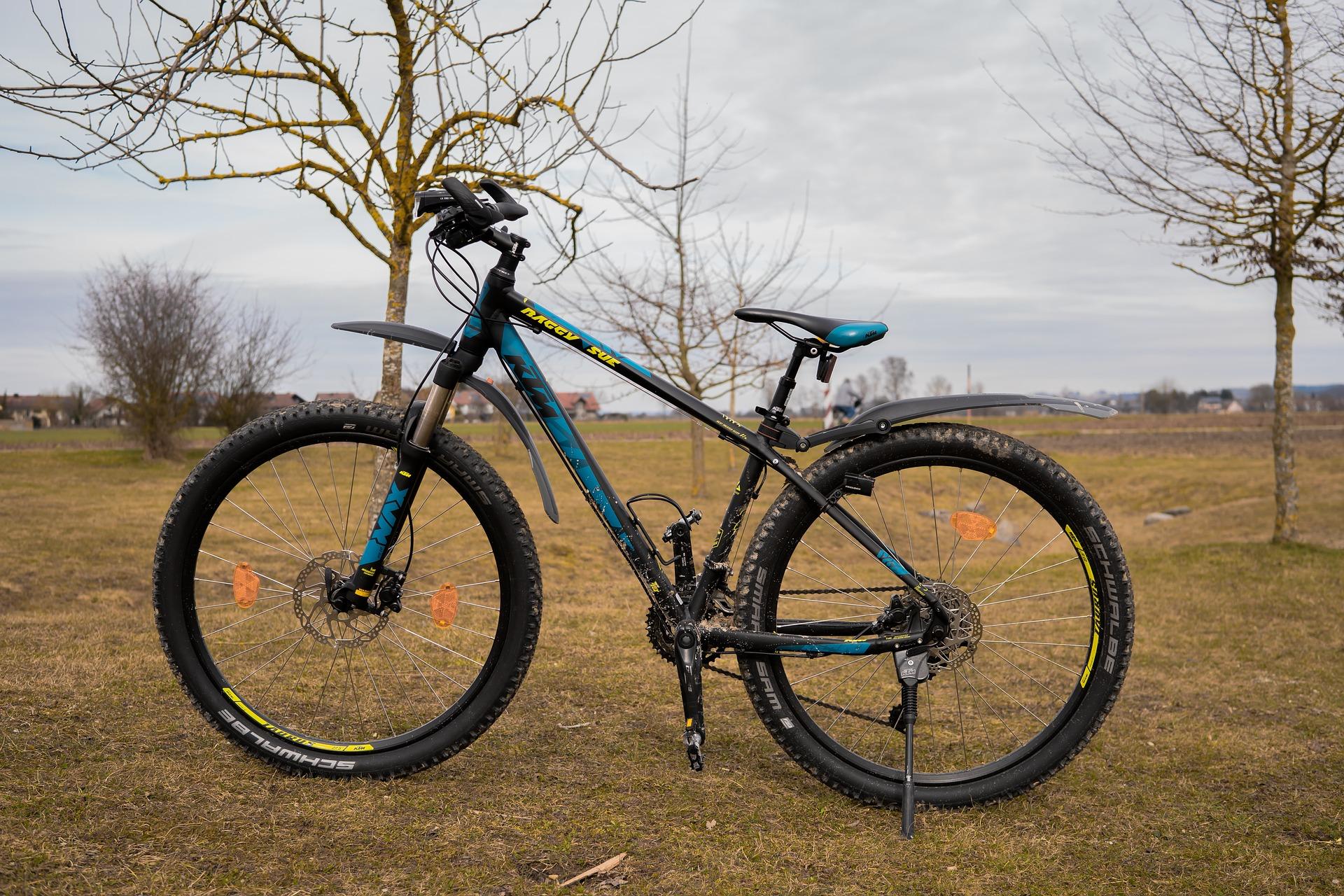 Road Bike vs Mountain Bike: Choosing The Right Ride